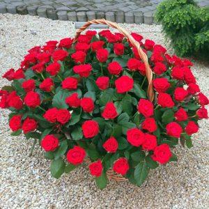 букет троянд в кошику на день народження, ювілей