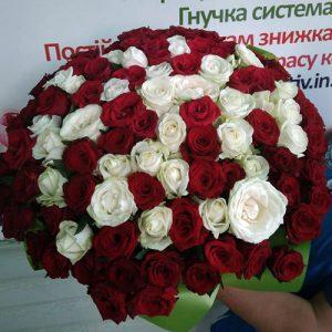 101 червона та біла роза, букет на день народження