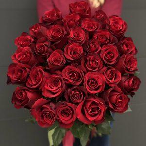 Роза импортная красная