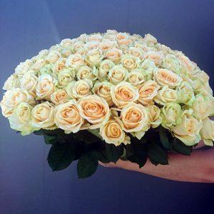 букет 101 кремовая роза в Хмельницком