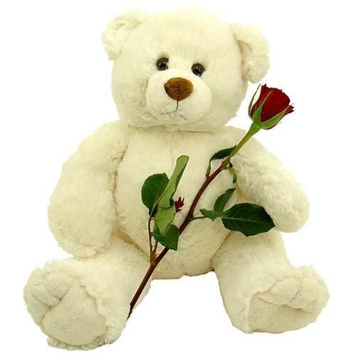 """подарок Мишка с букетом роз и """"Рафаэлло"""""""