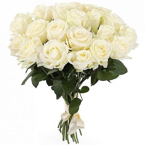 фото букета 21 біла троянда