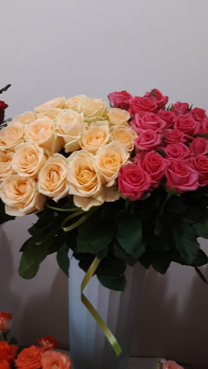 колір троянд