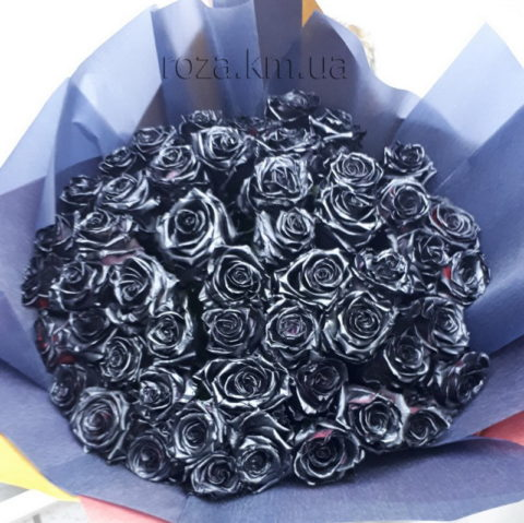 101_black_rose_roza.km