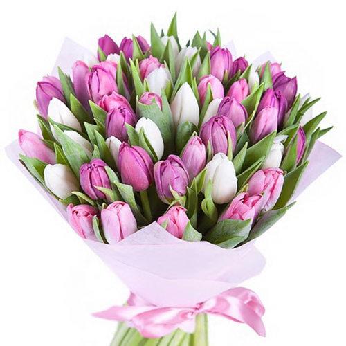 фото 49 тюльпанів білих і рожевих