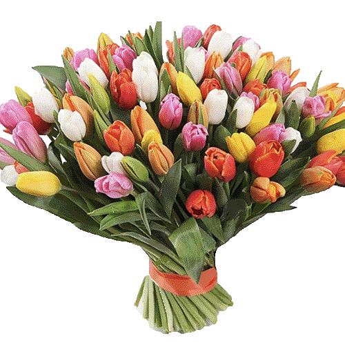букет к празднику 99 разноцветных тюльпанов