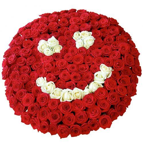 """201 красная роза """"Смайлик"""" фото букета"""
