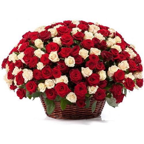 101 роза микс в корзине букет