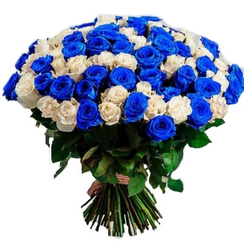 товар 101 белая и синяя роза (крашеная)