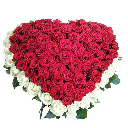 букет 101 роза сердцем - красная, белая