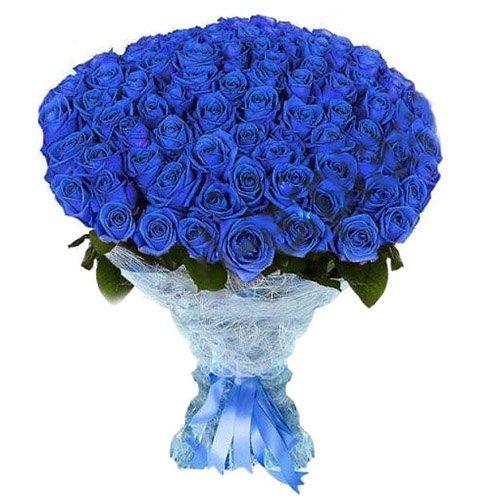 101 синяя роза (крашеная) фото букета