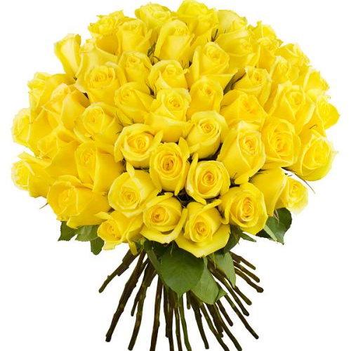 фото букета 51 желтая роза