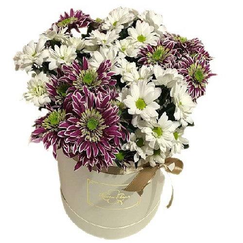 Хризантеми у капелюшній коробці мікс фото
