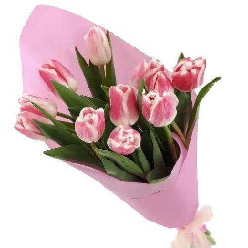 святковий букет 11 рожевих тюльпанів