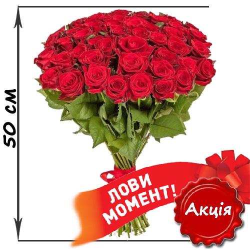 акційний букет 51 червона троянда (50см)