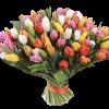 букет 99 разноцветных тюльпанов