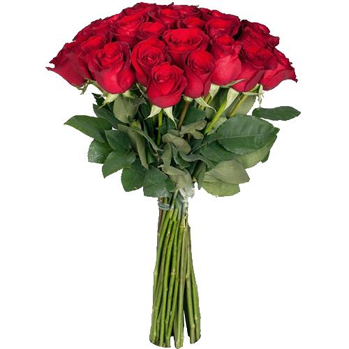 Розы экстра класса (поштучно) красные