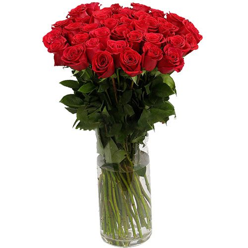 букет Роза импортная красная (поштучно)
