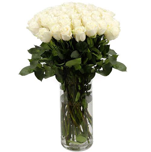 фото товара Роза импортная белая (поштучно)